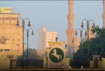 طقس الجمعة معتدل.. والعظمة في الزقازيق 24