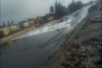 مياه ري شديدة الملوحة تهدد أراضي مزارعي صان الحجر