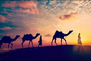 الهجرة النبوية.. دروس في التخطيط الدقيق والتنظيم المحكم