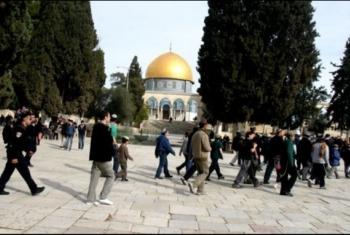 العدو يعزز تواجده في القدس تزامنا مع اقتحام المسجد الأقصى