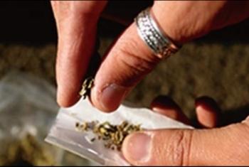 شكوى من انتشار تجار المخدرات في شوراع قرية أولاد موسى بأبوكبير