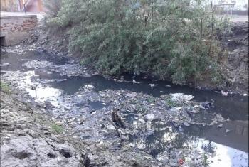 نقص المياه يهدد الزراعة بقرية منشأة ناصر بأولاد صقر