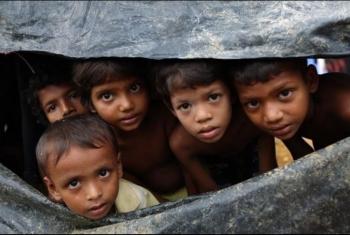 تحقيق أممي: مئات الآلاف من مسلمي الروهينجا مهددون بالإبادة في ميانمار
