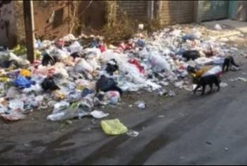 كفر صقر| شكوى من مقلب للقمامة بالقرب من مدرسة بقرية كفر الشعراء