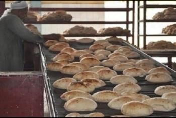 أهالي قرية الأزدهار بالحسينية يطالبون بمخبز بلدي