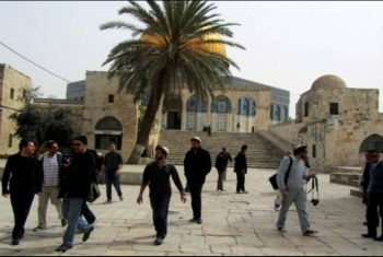 مستوطنون يقتحمون المسجد الأقصى واعتقال مقدسية قرب باب الرحمة