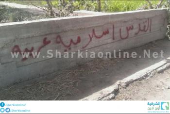 بالصور... حملة اسبراي لثوار كفر صقر تندد بغلاء الأسعار
