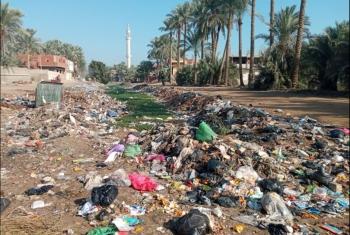 تراكم القمامة والحيوانات النافقة بمصرف القرين يهدد الأهالي