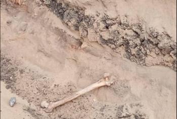 لوحة توزيع كهرباء فوق رفات موتى قرية الموانسة بكفر صقر (صور)
