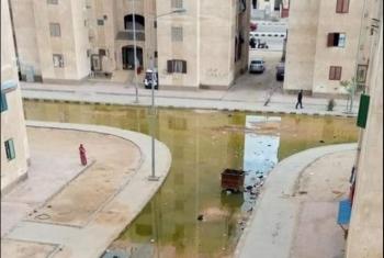 سكان المجاورة 12 بالعاشر من رمضان يستغيثون بسبب مياه المجاري
