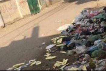 كفر صقر  إهمال المحليات وراء انتشار القمامة بالحوامدة