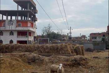 أولاد صقر| أسلاك الضغط العالي تهدد سكان الروازقية