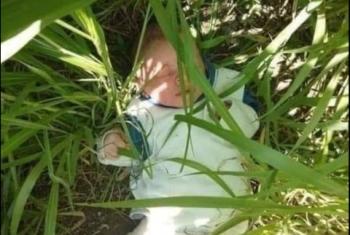 العثور على طفل رضيع بإحدى الأراضي الزراعية في كفر صقر