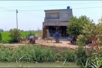 صرخات استغاثة لأهالي أولاد صقر بسبب انقطاع المياه لمدة شهرين