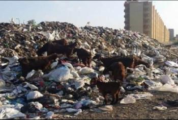دخان القمامة يبعث الغضب في نفوس أهالي ههيا