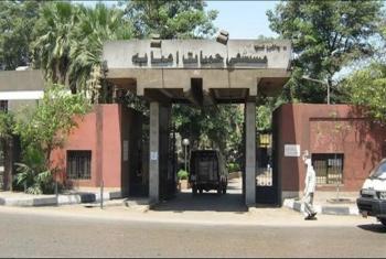 ممثلة تنشر فيديو يظهر الإهمال في حميات إمبابة