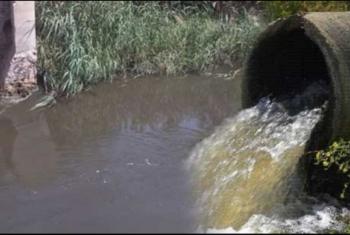مياه ترعة القراقرة بمنيا القمح ممزوجة بالصرف الصحي