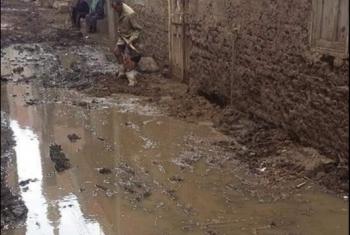 مياه المجاري تغرق شوارع قرية الجديدية بمنيا القمح