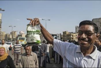 حكومة الانقلاب تحظر استيراد السكر لتتلاعب بسعره محليا