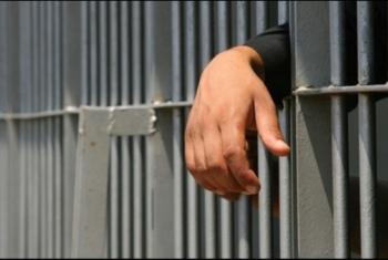 اعتقال محاميين تعسفيًا من داخل محكمة أبوحماد