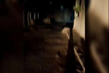 أهالي شارع المستوصف بديرب نجم يشكون تعطل أعمدة الإنارة