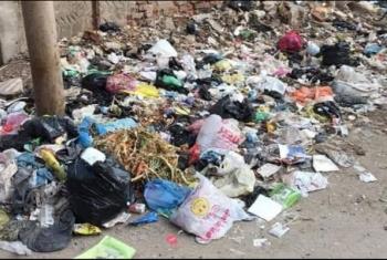 استغاثات من تراكم القمامة بقرية سنجها في كفر صقر
