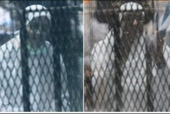 نشطاء عن صورعائشة الشاطر وهدى عبدالمنعم: أحرار في زمن الاستبداد