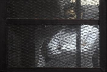 تفاعل واسع لإنقاذ حياة علاء عبد الفتاح
